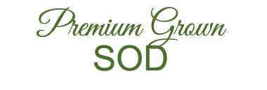 Premium grown sod